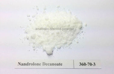 Muscle Building White Powder Testosteron Decanoate / Testosterone Deca