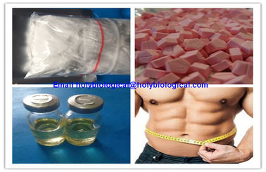 Pertumbuhan Otot Drostanolone Steroid Anabolic Steroid Hormon Drostanolone Propionate Masteron